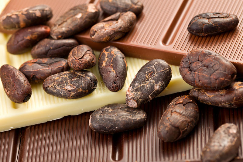 Download Various Chocolate Bars With Cocoa Beans Stock Image - Image: 23725649