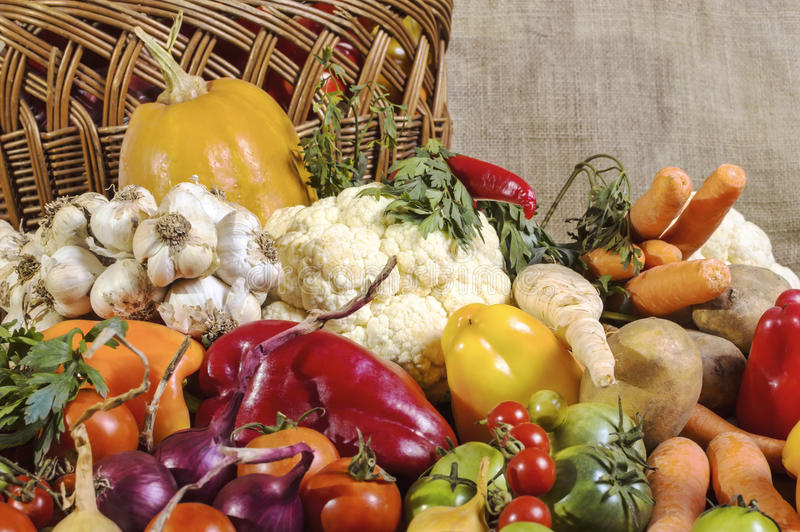 Various colorful raw vegetables. Close up of various colorful raw vegetables stock photography