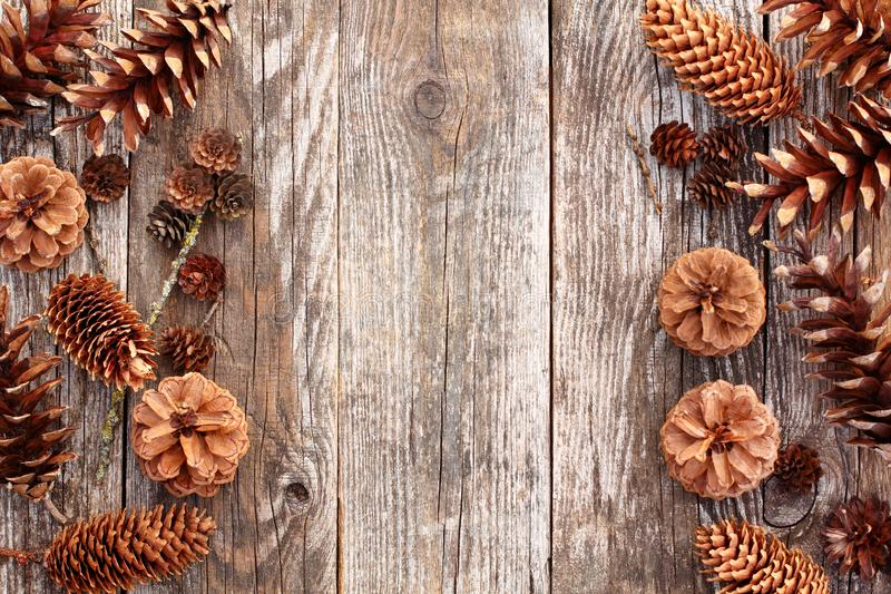 Various cones on wooden table in the form of borders. Pine spruce larch cones on a old shabby wooden table in the form of borders. Top view royalty free stock photography