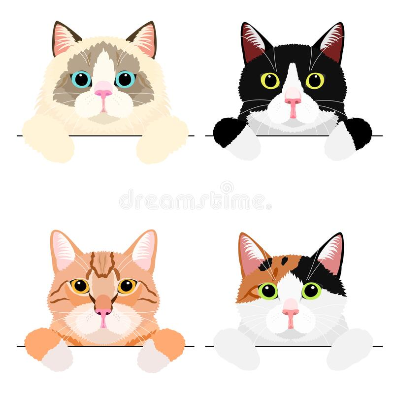 Various cute cat banner set. Various cute cat holding copy space with pow, realistic touch, upper body royalty free illustration