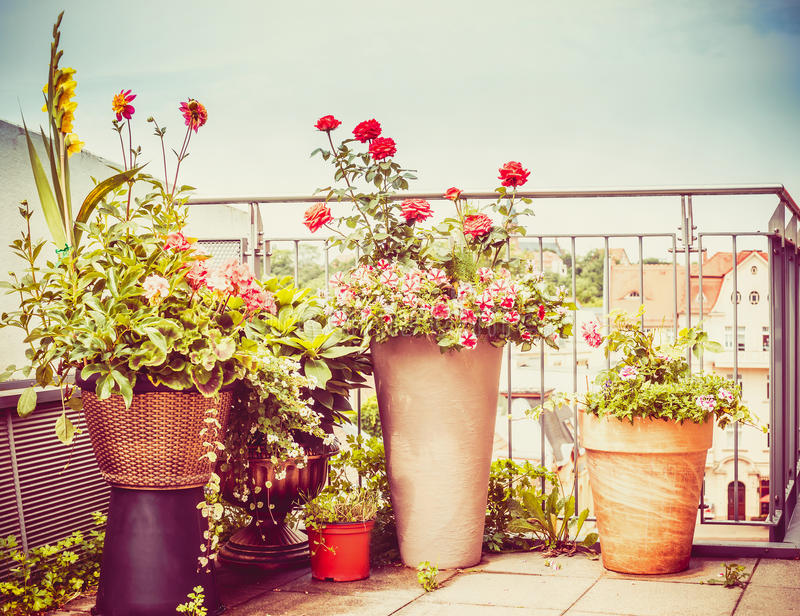 Various flowers patio pots and planter on terrace or balcony stock photography