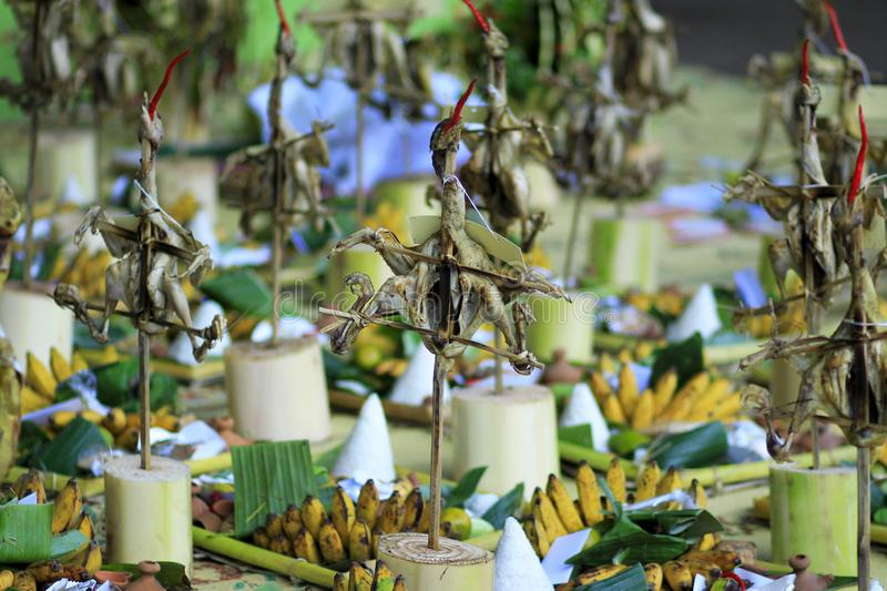 Various forms of rice, chicken, vegetables, fruits are prepared as offerings in the procession stock images