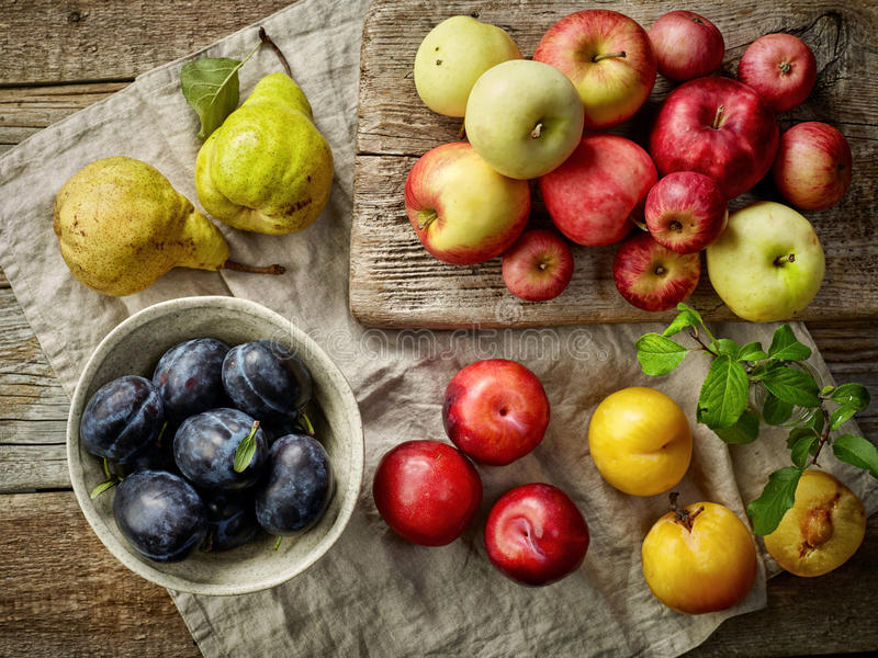 Various fresh fruits stock images