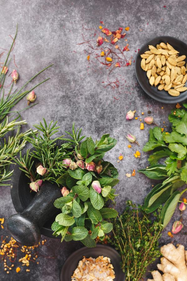Various freshly picked herbs and spices in granite mortar royalty free stock image