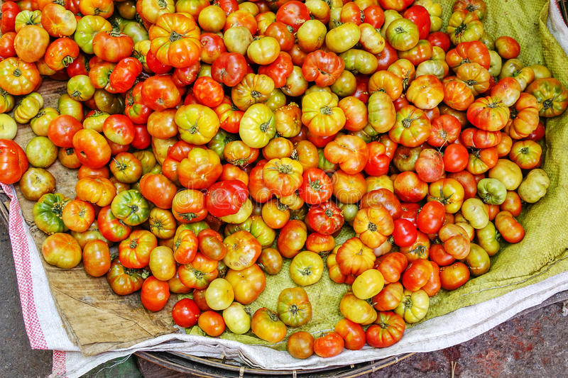Various goods in Burmese market , Myanmar. Fresh tomatoes in basket in Burmese market, Myanmar. In Myanmar, eggshells are used for plants to protect plants from royalty free stock photography