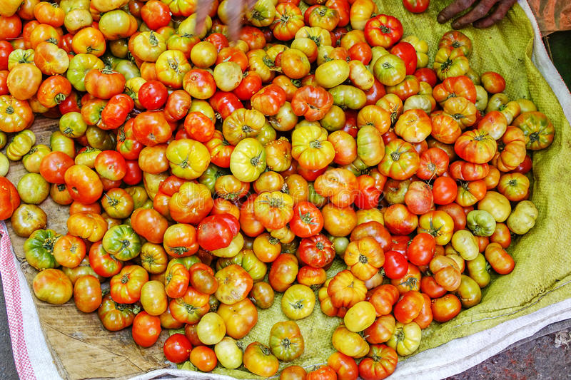 Various goods in Burmese market , Myanmar. Fresh tomatoes in basket, Burmese market, Myanmar. In Myanmar, eggshells are used for plants to protect plants from royalty free stock photography