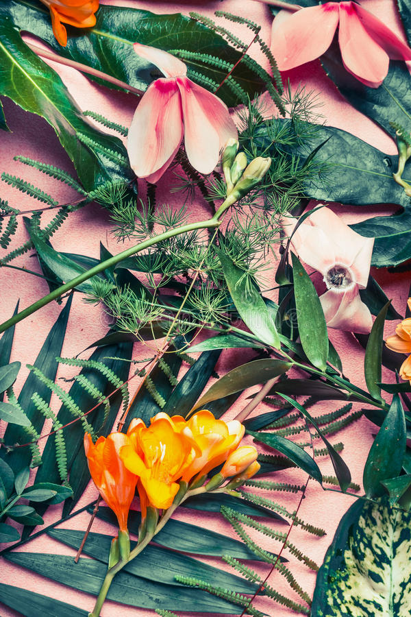Various green tropical leaves and exotic flowers , nature flat lay on pastel pink background stock image
