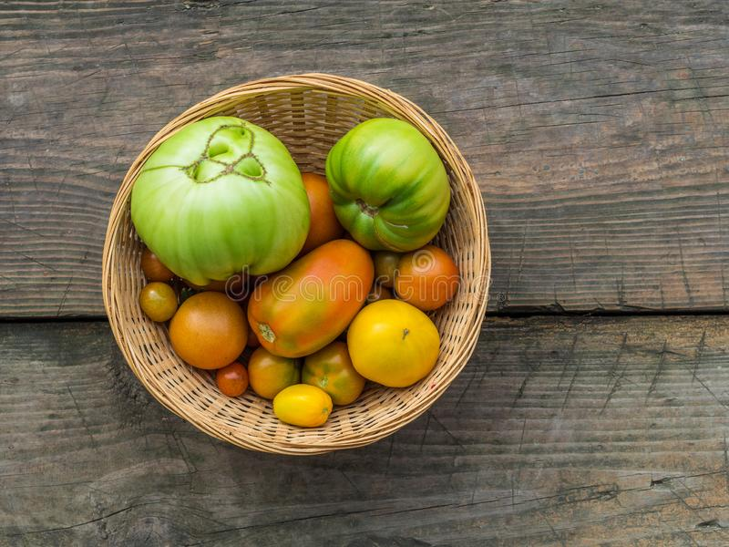 Various green, yellow, red, large, small, ugly garden tomatoes in a wicker basket on a wooden background. Flat lay royalty free stock photos