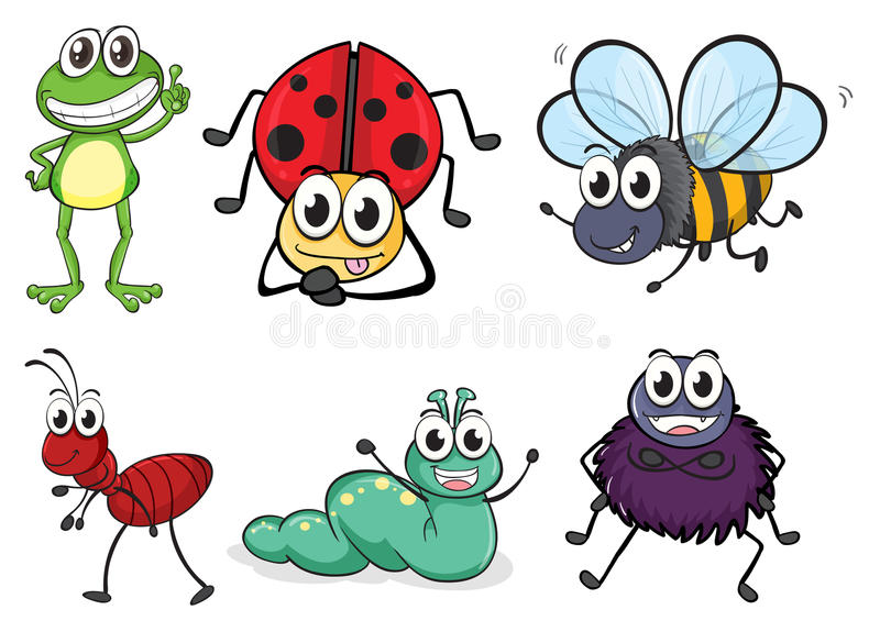 Various insects and animals. Illustration of various insects and animals on a white background stock illustration