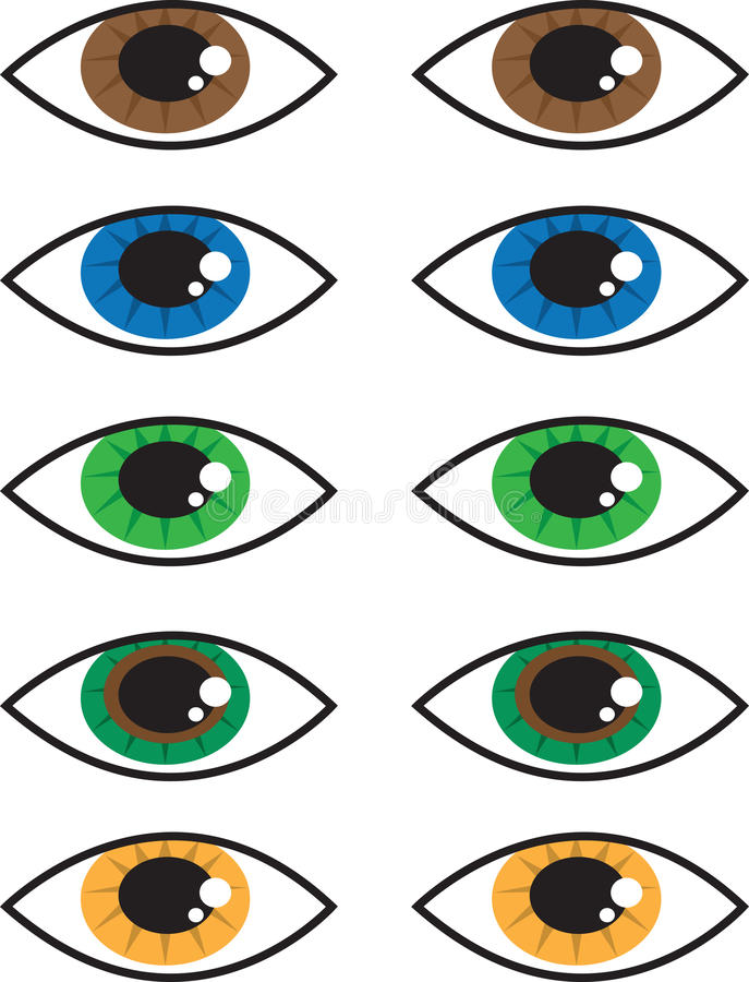 Eye Colors stock vector. Illustration of seeing, search ...