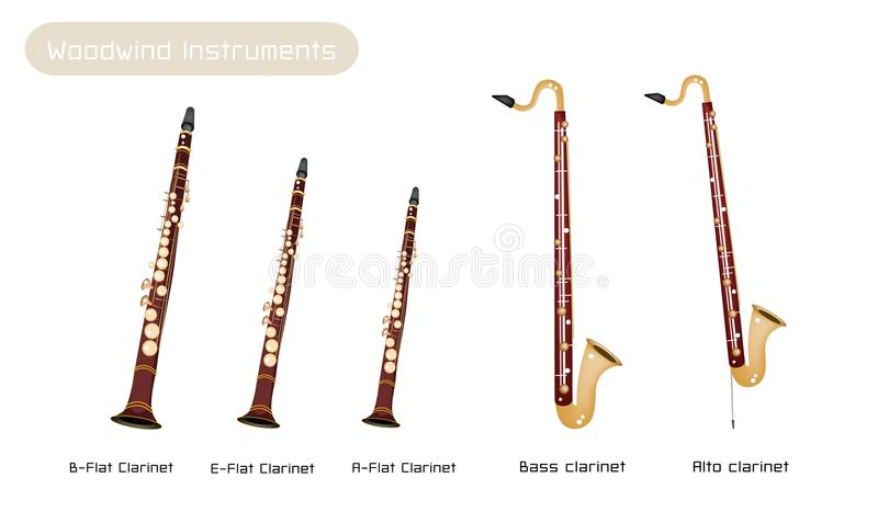 E Flat Alto Clarinet Various Kind Of...