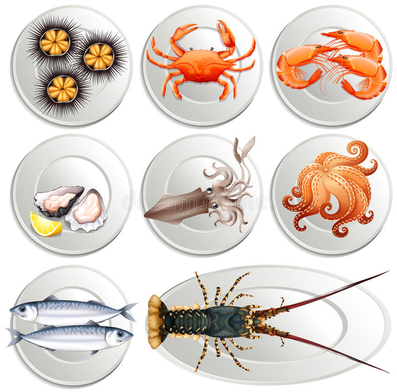 Various kind of seafood on plates vector illustration