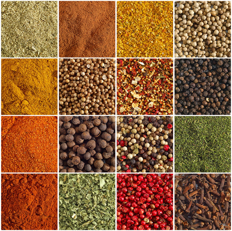 Various kinds of spices. On a white background royalty free stock photo
