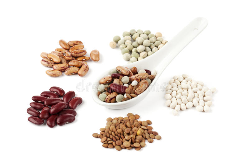 Various legumes royalty free stock images