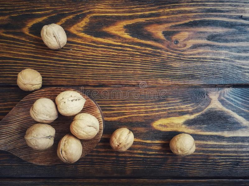 Walnut, peeled and in-shell single and together. Various nuts on a textured background of peeled and inshell stock photography