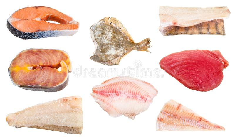 Various raw frozen fishes, steaks and fillets stock photos