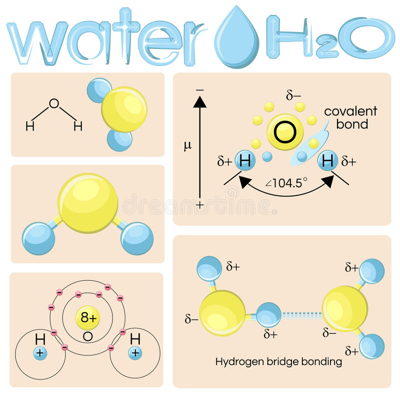 Various representations of water molecule H2O. stock illustration