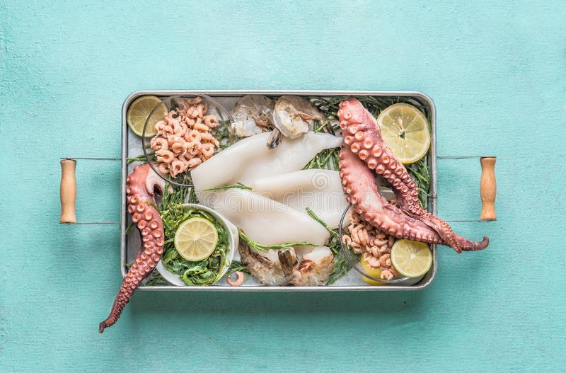 Various seafood in tray : octopus, shrimp, squid and seaweed on light blue background stock photo