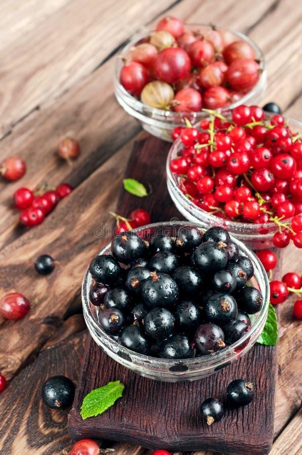 Various seasonal berries. Seasonal berries in bowls on wooden table. blackcurrants, redcurrants, gooseberry stock photography