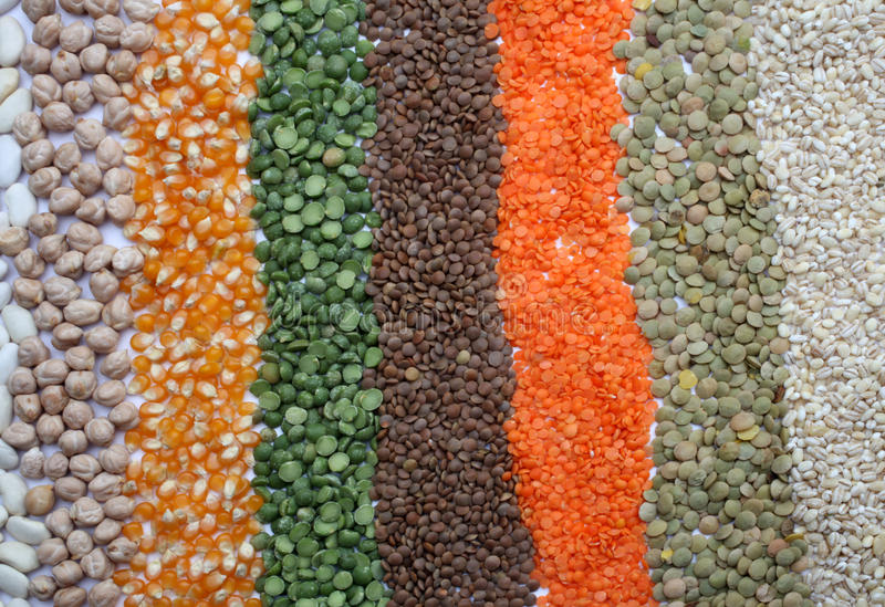 Various seeds and grains stock image