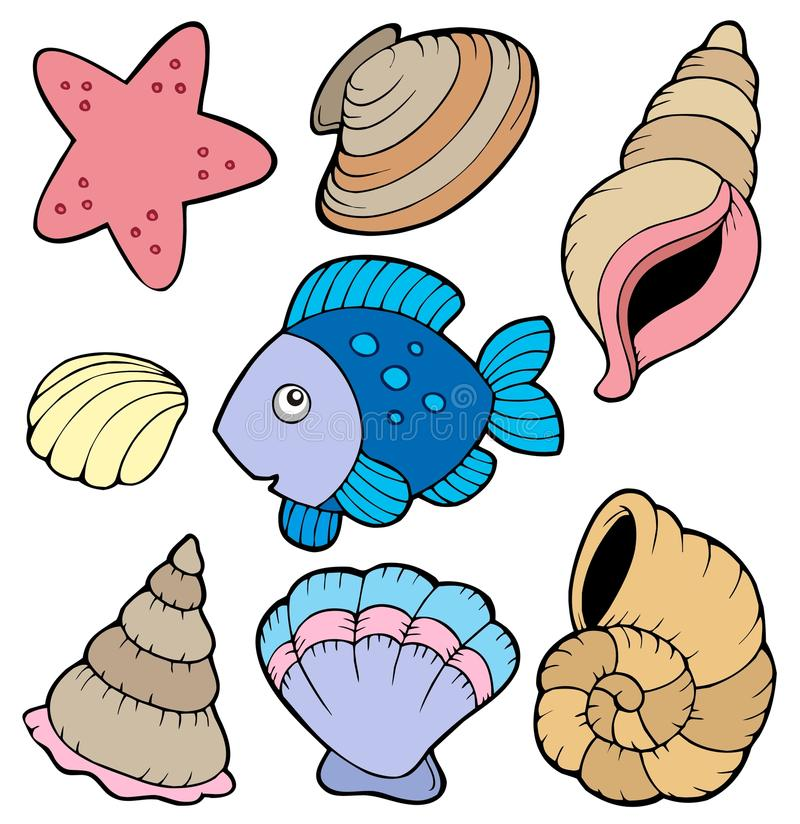 Download Various Shells And Fish Collection Stock Vector - Illustration: 13774638