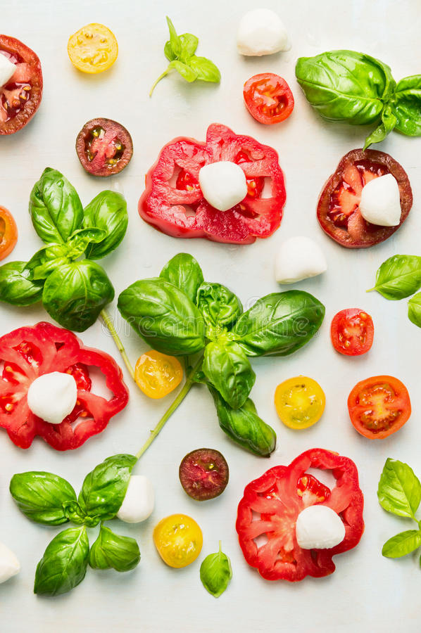 Various of sliced tomatoes with mozzarella cheese and fresh basil stock photography