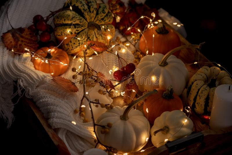 Various small pumpkins, leaves and berries and glowing lights. Halloween celebration. Various small pumpkins, leaves and berries and glowing lights. Dark photo royalty free stock photography