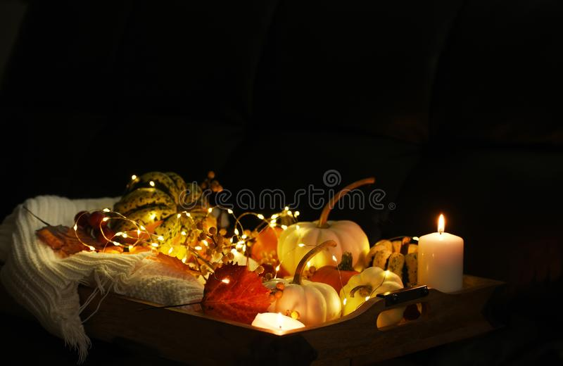 Various small pumpkins, leaves and berries and glowing lights. Dark photo. Halloween celebration. Holiday decorations stock images