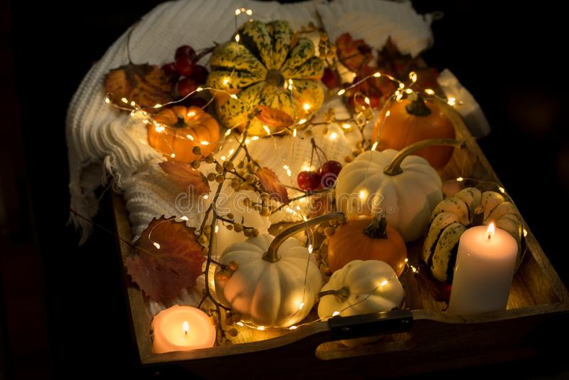 Various small pumpkins, leaves and berries and glowing lights. Halloween celebration. Various small pumpkins, leaves and berries and glowing lights. Dark photo stock photos