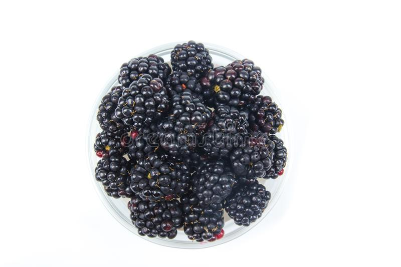Fresh blackberries, on plate on Isolated white background. Berries stock photography