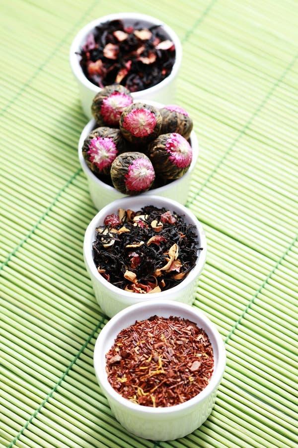 Various Tea Leaves stock photos
