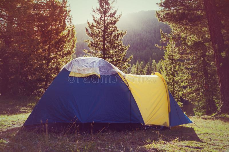 Adventures Camping and tent under royalty free stock photo