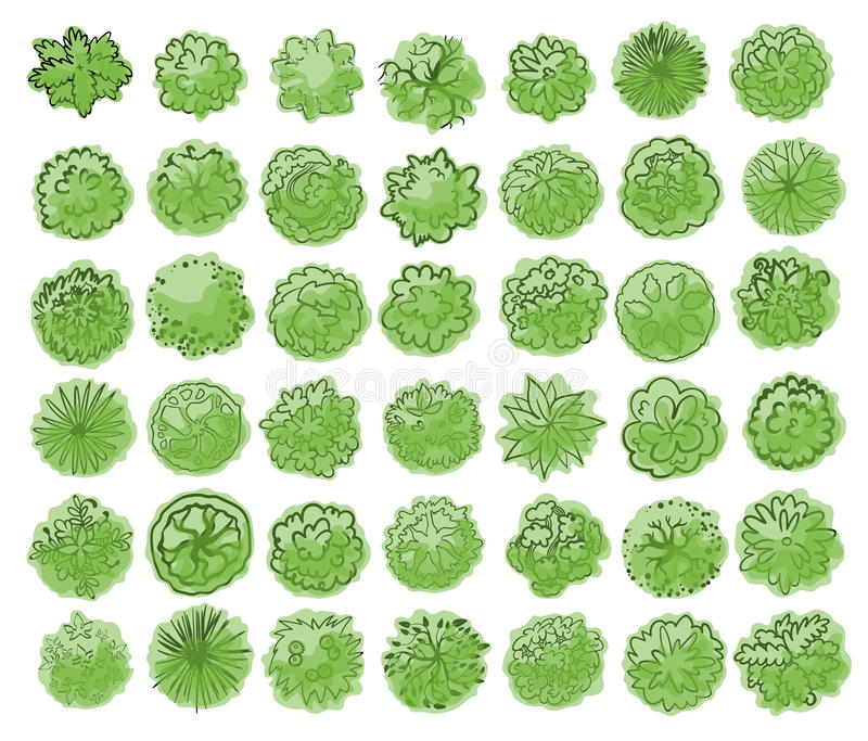 Various trees, bushes and shrubs, top view for landscape design plan. Vector illustration, isolated on white background. Various green trees, bushes and shrubs vector illustration