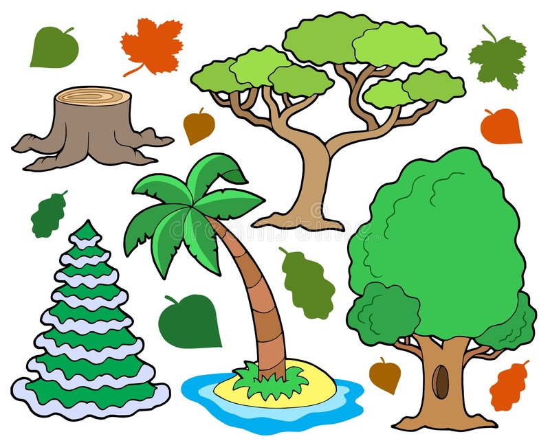 Various trees collection 1 stock illustration