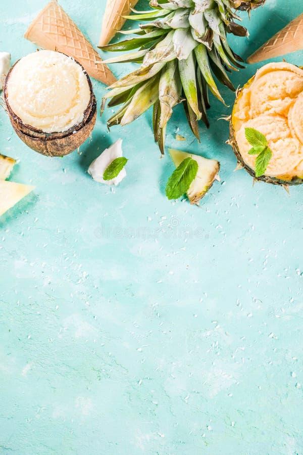 Various tropical ice cream sorbet stock photos