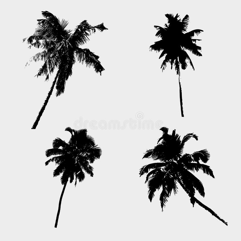 Various tropical palm tree black symbols eps10 royalty free illustration