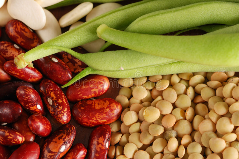 Various types of beans royalty free stock photo