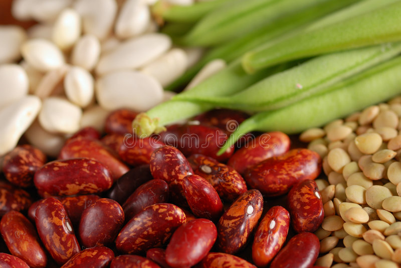Various types of beans royalty free stock photos