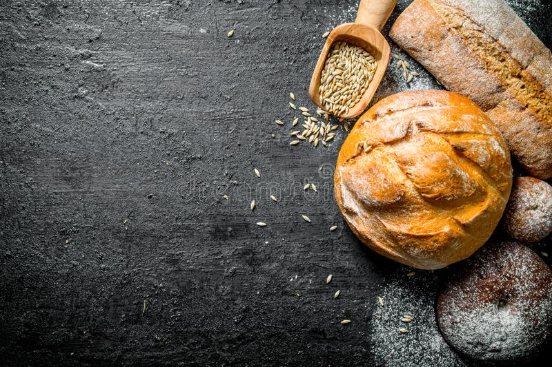 Various types of bread with grain. On black rustic background stock image