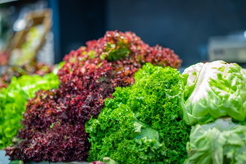 Various types of fresh lettuce on the counter of the grocery market. Bright colours, selective focus. Bokeh royalty free stock photos