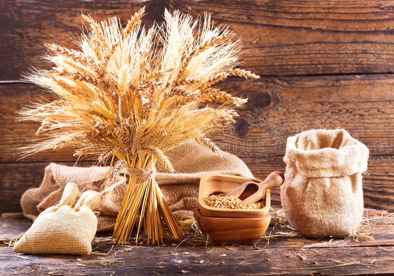 Various types of grains and cereals stock images