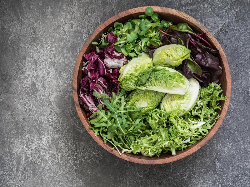 Various types of salad leaves. In big wood bowl on a grey background stock photography