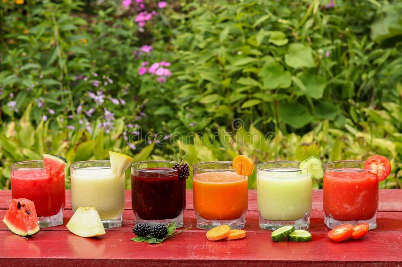 Various types of vegetable and fruit smoothies made of watermelon, cucumber, tomato, melon, carrot and blackberry, horizontal stock photos