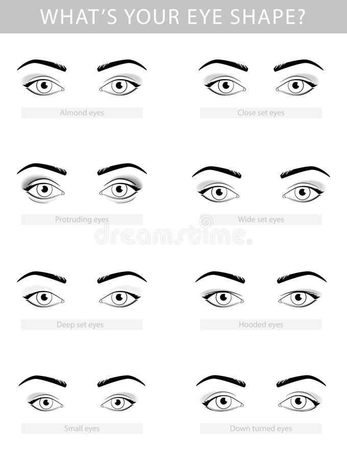 Various types of woman eyes, vector set vector illustration