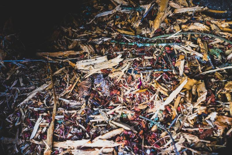 Various wood chips and garden clippings royalty free stock images