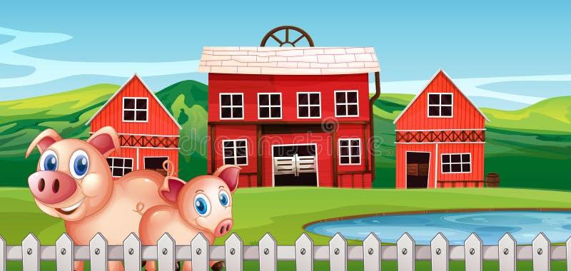 Varken bij landelijk landbouwbedrijf stock illustratie