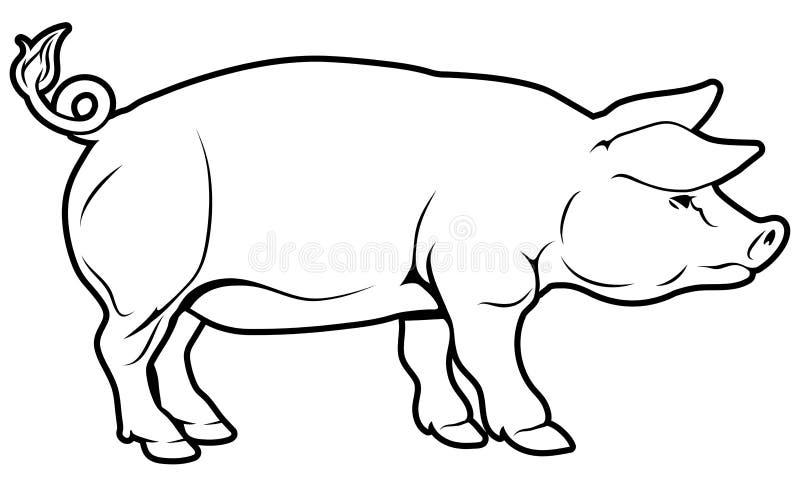 Varkensillustratie royalty-vrije illustratie