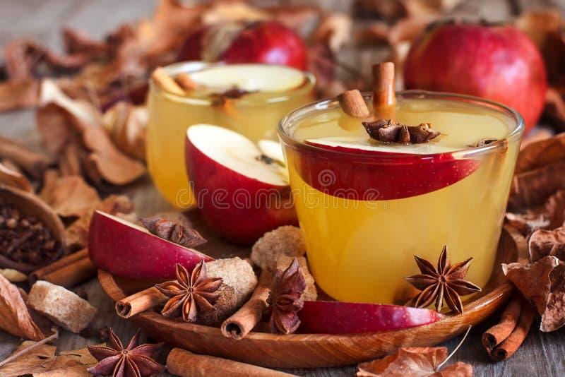 Varm äppelcider royaltyfri foto