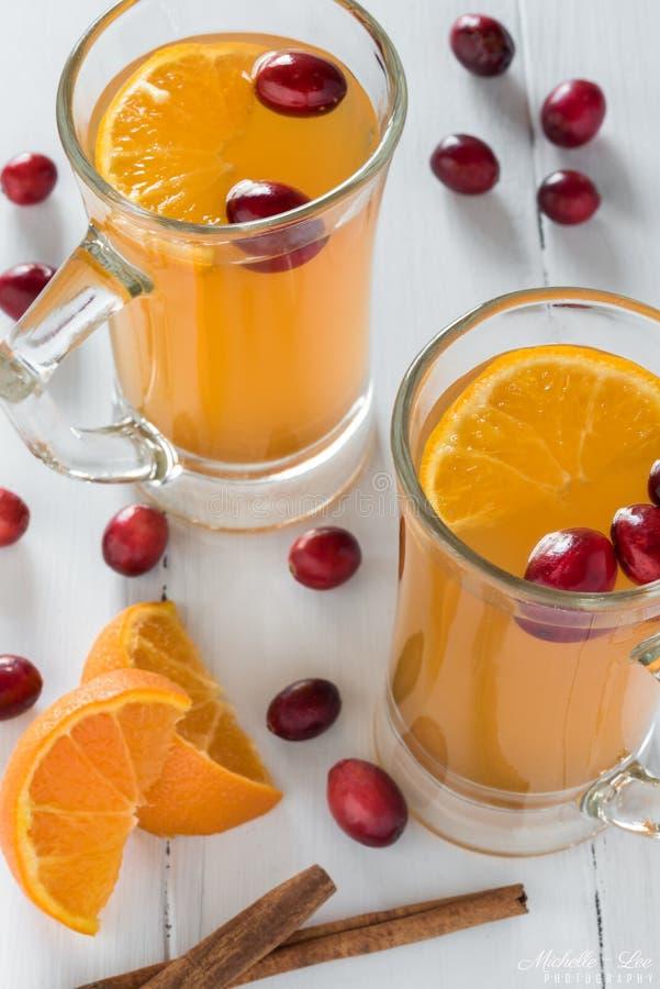 Varm Apple och tranbäräppeljuice arkivfoton
