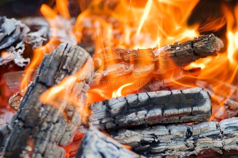 varm campfire mycket royaltyfri fotografi